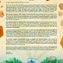 Cartel Dreambeach Villaricos 2020