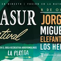 Cartel Sierrasur EcoFestival 2016