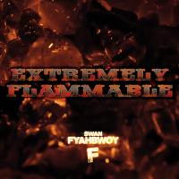 Extremely Flammable(2012)