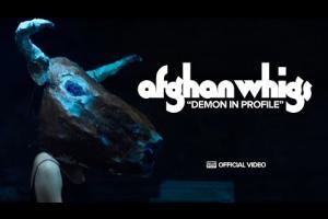 Demon In Profile