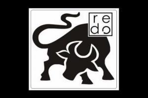 Toro remix (El Columpio Asesino)