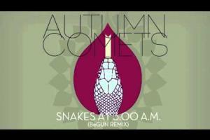 Autumn Comets - Snakes at 3:00 A.M. (BeGun remix)