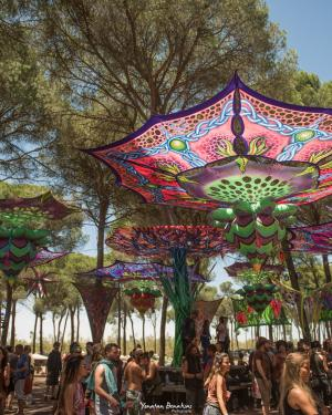 Transition Festival 2022