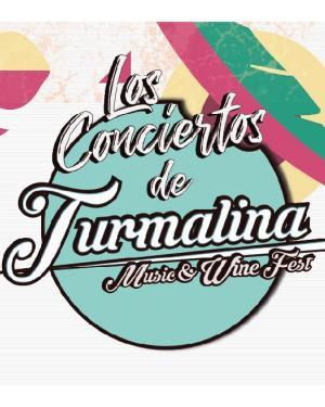 Los Conciertos de Turmalina Fest 2021